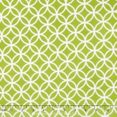 Cozy Cotton Boy - Lime Flannel Yardage